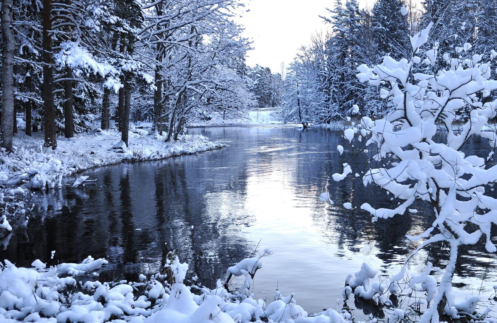 Neurodermitis im Winter