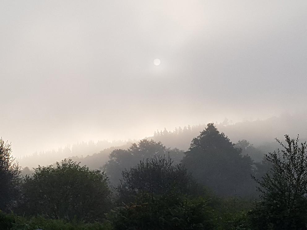 Nebel auf dem Weg nach Santiago de Compostela