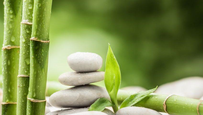 Wohlfühlfaktor Bambus Viskose